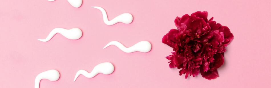 Vasektomie 4 schwanger nach monate Vasektomie