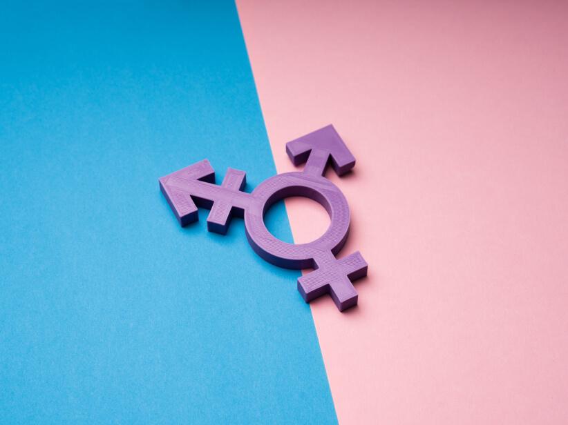 Transsexualität (Geschlechtsangleichende Operation)