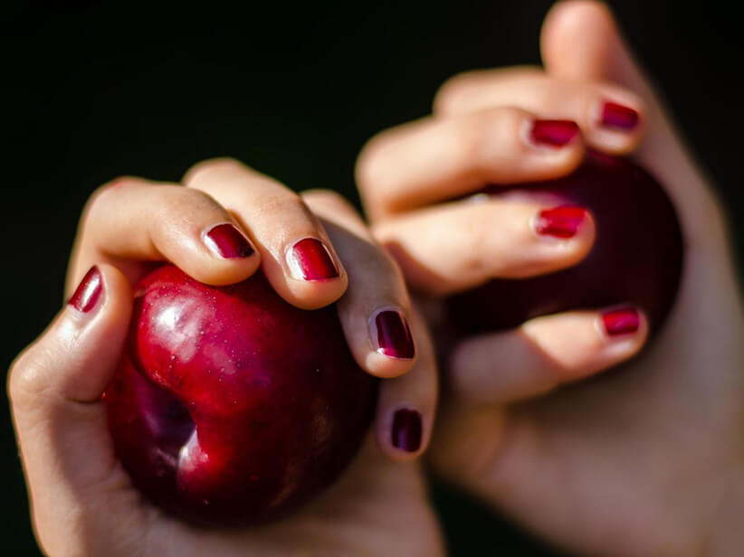 Gesunde Ernährung – Du bist, was Du isst?